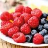 HOUSE-STYLE-CellsGenetics-NUTRITION-test2